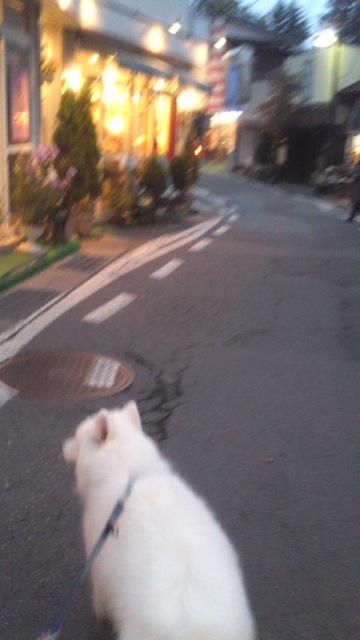 軽井沢 その1_c0099133_00389.jpg