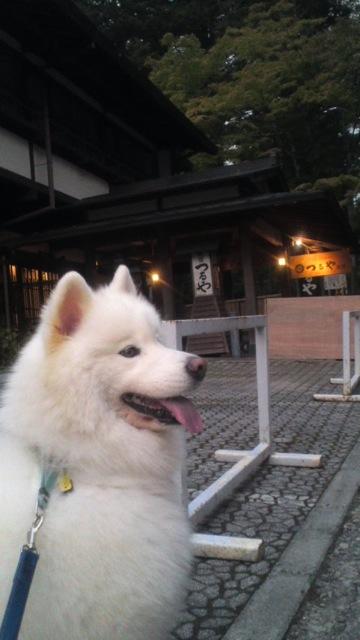 軽井沢 その1_c0099133_23594418.jpg