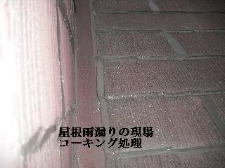 f0031037_1735149.jpg