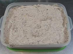 10月の料理「サバのパテ」_d0177560_22474494.jpg