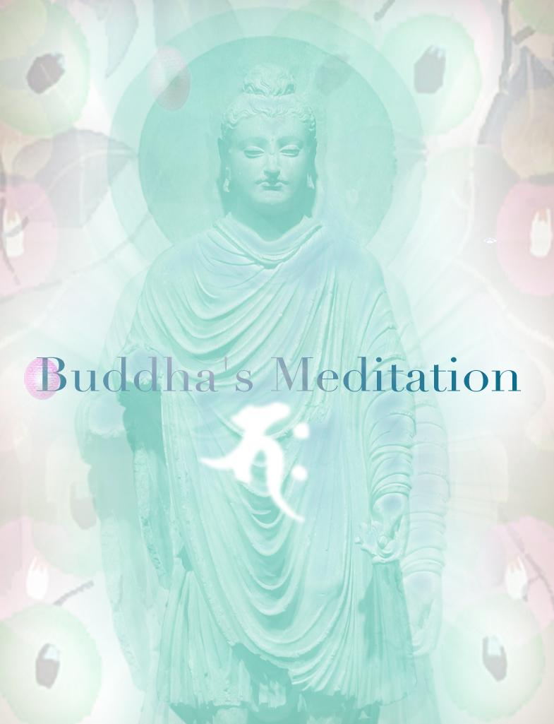 瞑想_c0142471_17552157.jpg