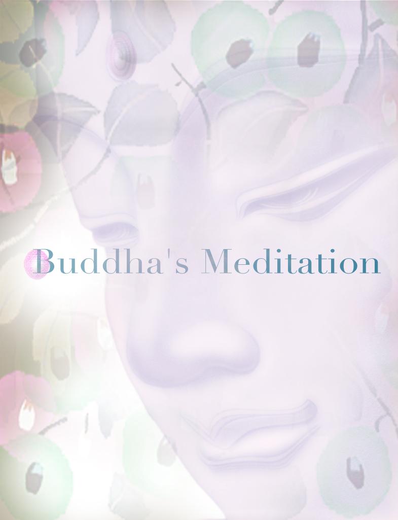 瞑想_c0142471_17554888.jpg