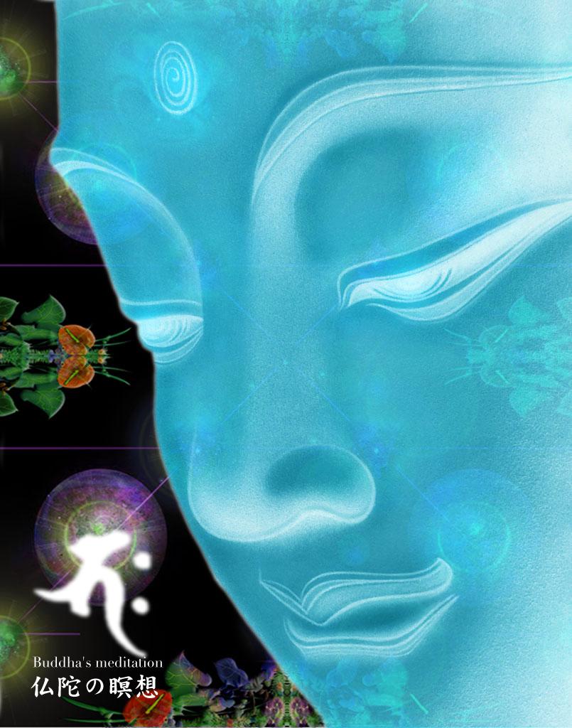 瞑想_c0142471_1757364.jpg