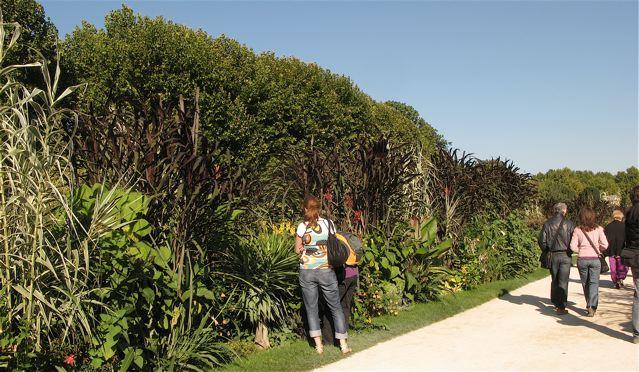 秋のパリ5区jardin des plantes(パリー植物園)_f0119071_5384775.jpg