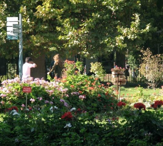 秋のパリ5区jardin des plantes(パリー植物園)_f0119071_6115932.jpg