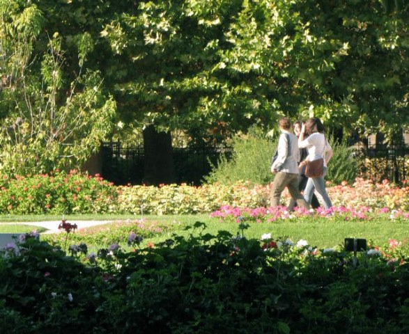秋のパリ5区jardin des plantes(パリー植物園)_f0119071_6125057.jpg
