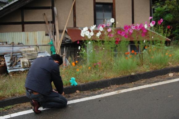 日本の風景。_c0180686_762787.jpg