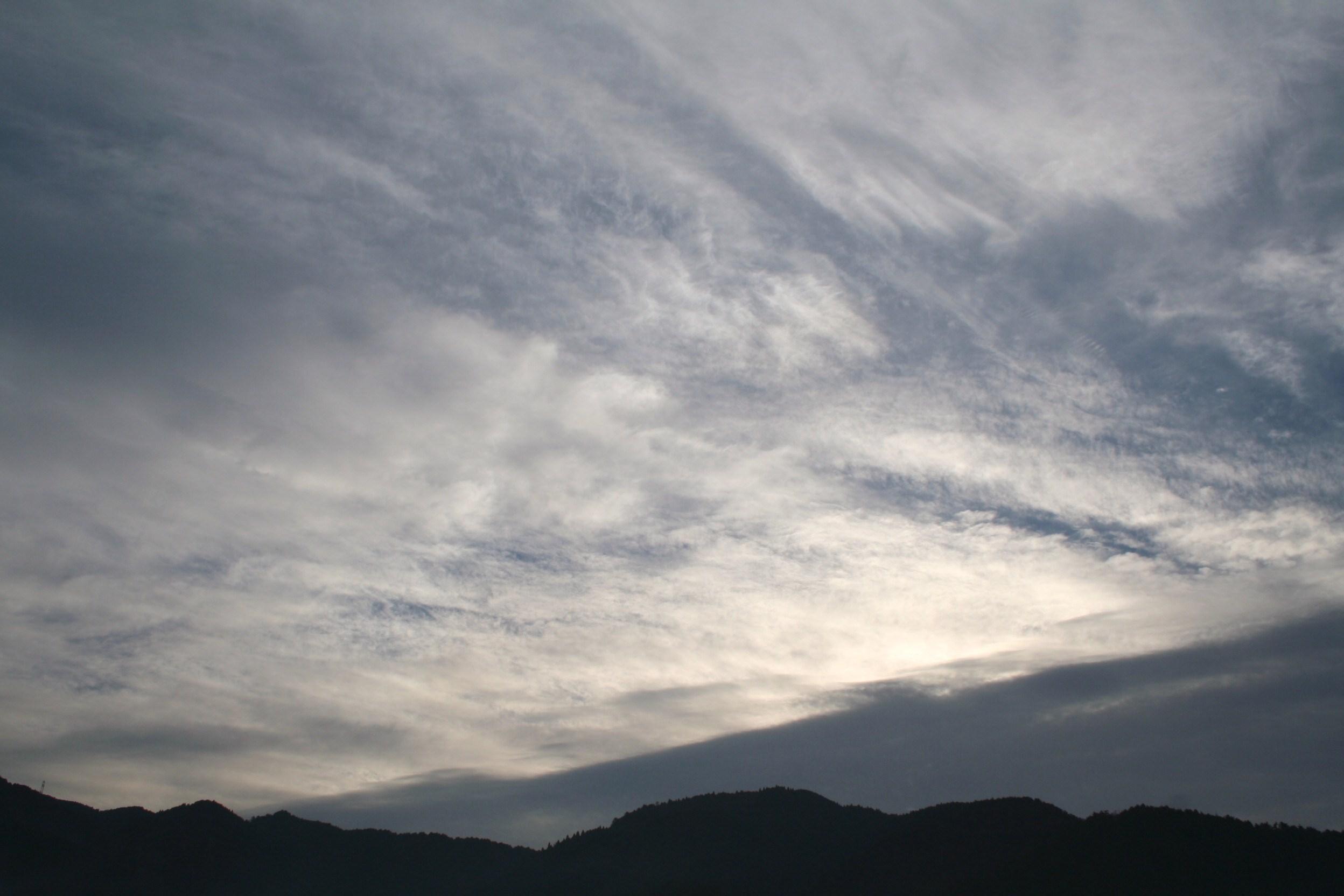日曜日の朝のお散歩_c0100195_2282352.jpg
