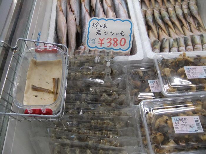 鵡川シシャモを食べに行こう ツー!!_c0226202_6392013.jpg