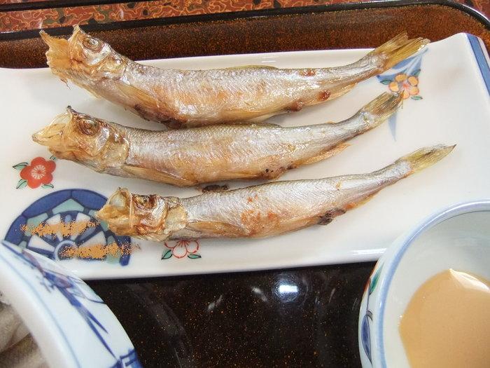 鵡川シシャモを食べに行こう ツー!!_c0226202_6473867.jpg