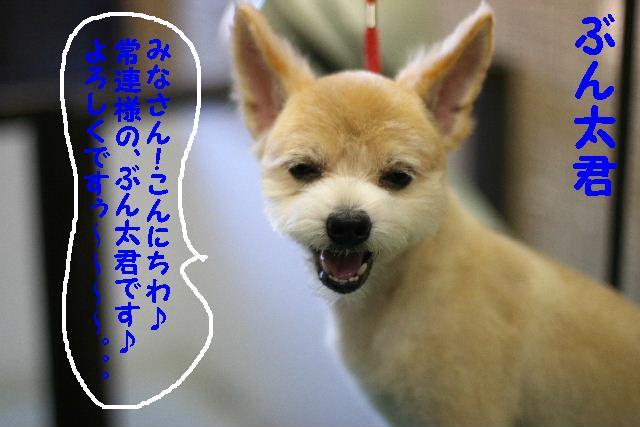 早速!!_b0130018_1535681.jpg
