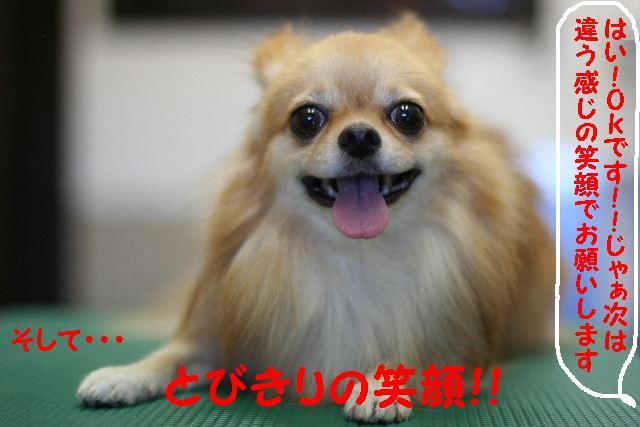 早速!!_b0130018_156065.jpg