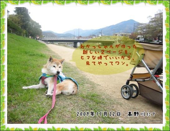 お知らせ_c0049950_1573972.jpg
