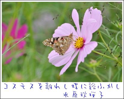 b0172951_21544236.jpg