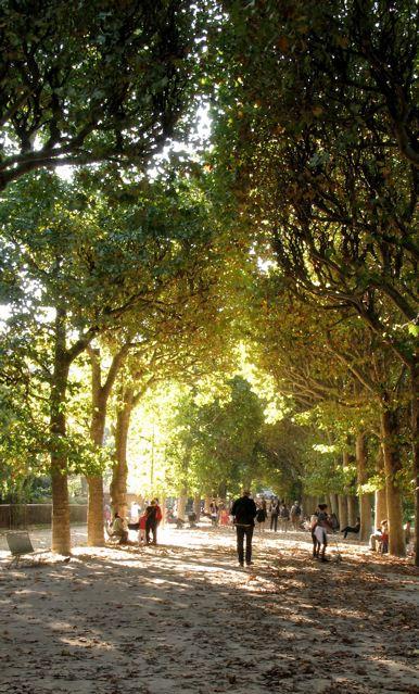秋のパリ5区jardin des plantes(パリー植物園)_f0119071_5144688.jpg