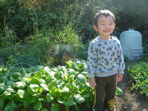 収穫の楽しみを子供達にも!!_b0201492_8164812.jpg