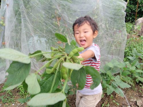 収穫の楽しみを子供達にも!!_b0201492_820764.jpg