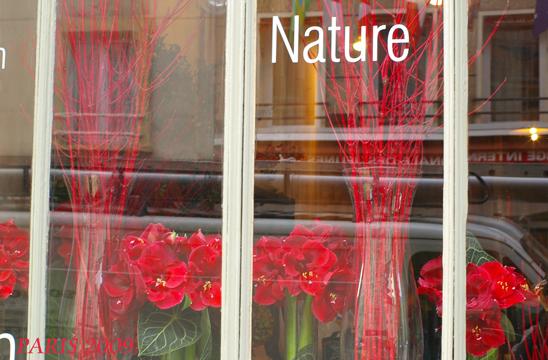 ◆2011年PARISへ◆_b0111306_2220452.jpg