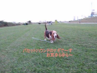 f0214121_2239691.jpg