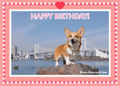唯ちゃん、お誕生日おめでとう♪_d0102523_10333194.jpg