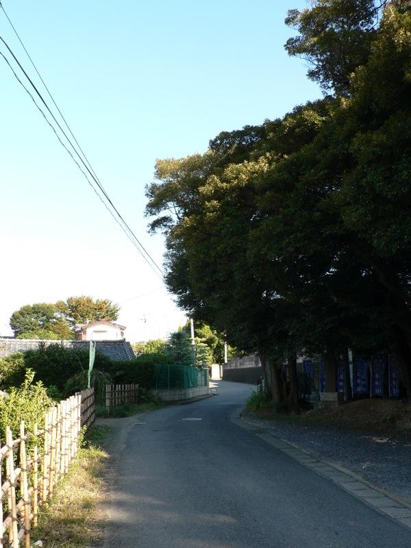 泉神社_d0001843_23364642.jpg