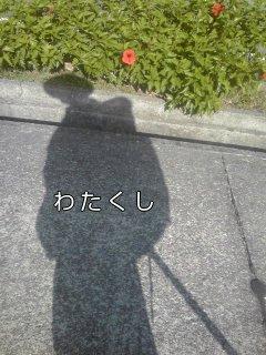 f0222943_1283168.jpg