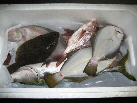 大東港より魚が届きました_c0206545_12435024.jpg