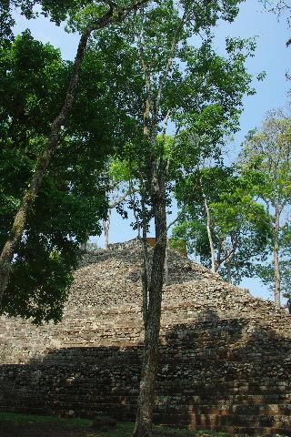コパン遺跡 (6) 東広場から神聖文字の階段へ_c0011649_9485399.jpg