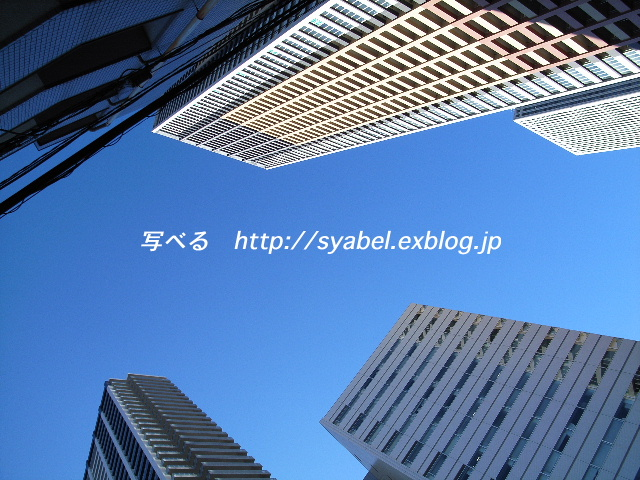 c0153764_0163664.jpg
