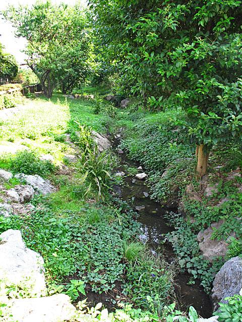 落合川を辿る(1)川のはじまり_c0163001_014750.jpg