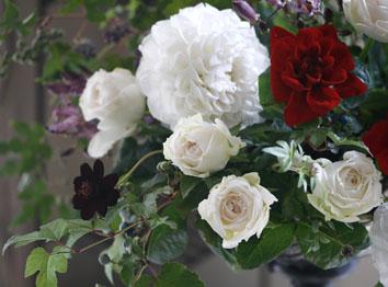 白の魅力_b0208604_18344515.jpg