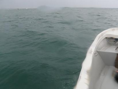海が。。。_a0155606_1656885.jpg