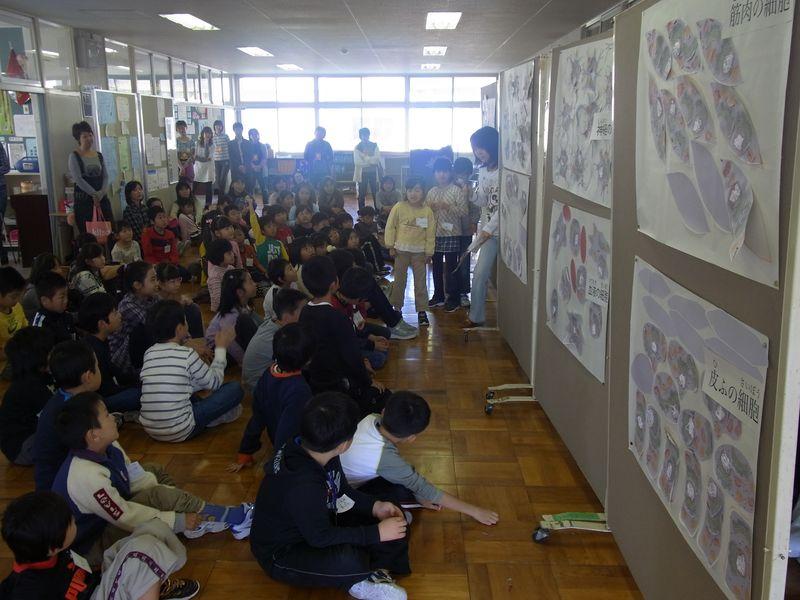 小学校で細胞のお勉強_c0025115_1872887.jpg