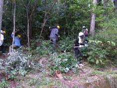 愛知県信用農業協同組合連合会さんの森林保全活動_d0105723_10565240.jpg