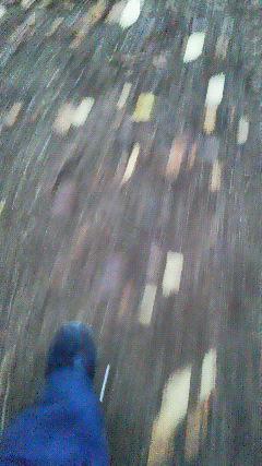 f0161834_1843509.jpg