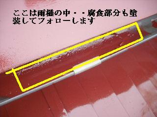 屋根塗装終了_f0031037_2264483.jpg