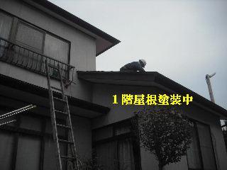 屋根塗装終了_f0031037_2272939.jpg