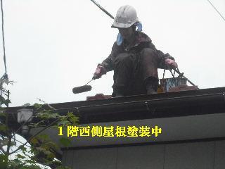 屋根塗装終了_f0031037_2273721.jpg