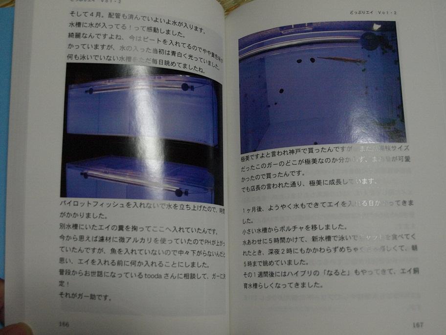 """""""どっぷりエイ""""Vol.2到着!_b0188042_10585435.jpg"""