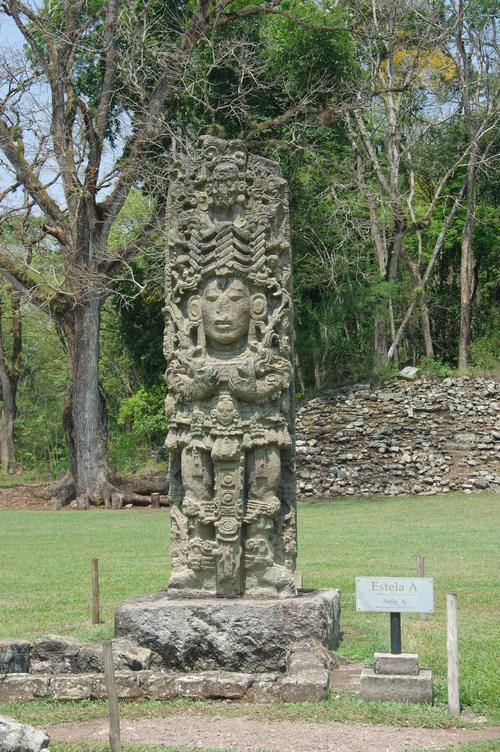 コパン遺跡 (8) グランプラザのステラ(石碑)群_c0011649_1838197.jpg