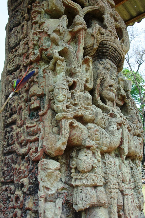 コパン遺跡 (8) グランプラザのステラ(石碑)群_c0011649_1845298.jpg