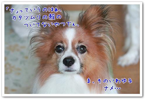 d0013149_2135341.jpg