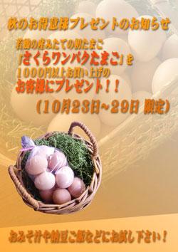 b0138650_1772135.jpg