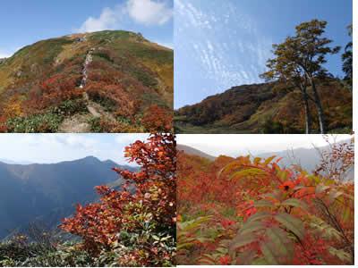 エルマール山岳隊!_c0207861_16483619.jpg
