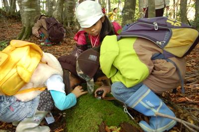 生物多様性ーブナの森のムッレ体験教室 大成功。_a0036384_2575376.jpg