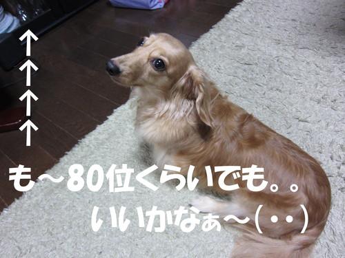 b0200291_1811234.jpg