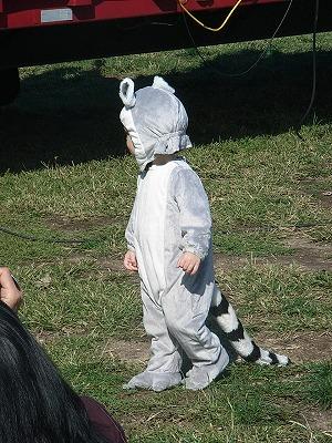 Halloween Harvest Festival_b0209691_7162924.jpg