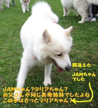 f0212597_106834.jpg