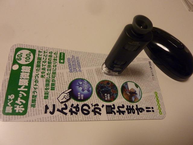 b0035524_942369.jpg