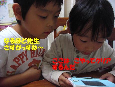 f0191259_954877.jpg